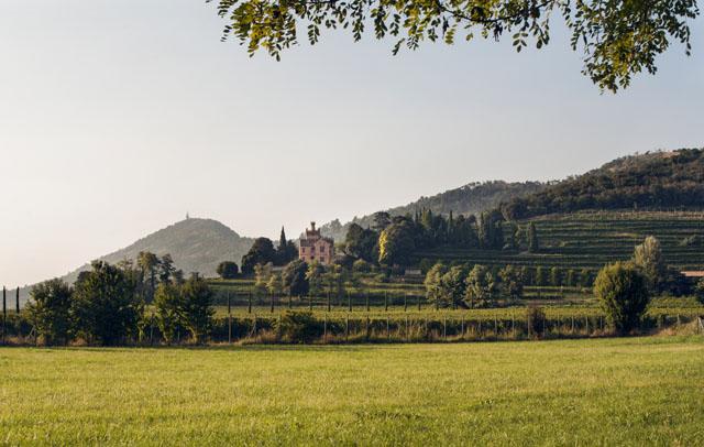 La tenuta Castello Bonomi